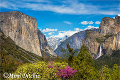 Tunnel View 2 (Mimi Ditchie) Tags: clouds bluesky yosemite halfdome getty elcapitan bridalveilfalls gettyimages tunnelview mimiditchie mimiditchiephotography yosemite2016