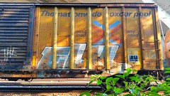 ELK (BLACK VOMIT) Tags: car train ol box south el dirty dos boxcar elk freight kamino elkamino