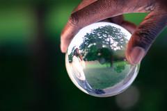 Version Uncertain (cara zimmerman) Tags: highlandpark crystalball