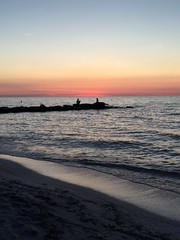 Detroit - Shoreway Cleveland Oh. #amazing #evening #beachwalking #sunsets #greatcompany #lakeerie #Edgewater. #treesilhouettes #beach #mermaid ?? (kelsey_erinbook13) Tags: beach evening amazing lakeerie sunsets mermaid edgewater beachwalking treesilhouettes greatcompany