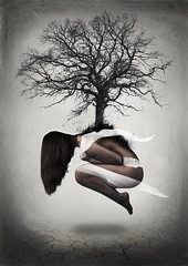 Home in a Tree (Tiffany Peyrel) Tags: tree art nature photography earth surrealism fineart fine surreal fineartphotography