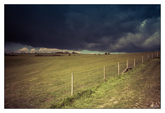 Angry Heavens II (go18lf2004) Tags: trees weather clouds fence sussex track mood path threatening fields crops atmospheric southdowns