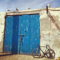 Essaouira (yaelgasnier) Tags: travel square colorfull morocco squareformat maroc marrakech rise marruecos marokko  wonderfulplaces   shotaward vsco beautifuldestinations iphoneography instagramapp instamorocco igworldclub iphone6plus marocphotonet