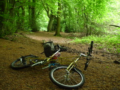 Stopped  for a Photograph (cycle.nut66) Tags: road leica trees brown green wheel lumix earth steel space small hill off hills panasonic summicron frame 27 chiltern bridleway moulton tsr saddlebag carradice lx3 tsr27 bacombe