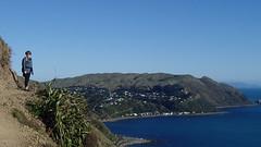 Paekakariki to Pukerua Bay New Zealand Escarpment walk (spiceontour) Tags: newzealand walkway tasmansea escarpment porirua paekakariki 2016 pukeruabay