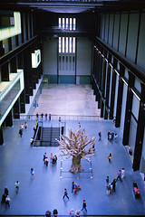 Turbine Hall with Tree (colinpoe) Tags: 6x9 ektarlens mediumformat ektar100 aiweiwei kodakektarfilm medalistii sculpture tree museum turbinehall kodakmedalist 620 medalist powerstation tatemodern powerplant architecture