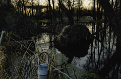 28thAVEexit (Midwest Cargo Cult) Tags: midwestcargocult swamp funk sunrise urban landscape nature