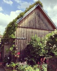 (T..i..m..o) Tags: barn garden garten scheune cottagegarden tagderoffenengartenpforte zeithain schreyshof
