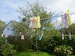 Clothes Line (msganching) Tags: ireland garden cottage dingle kerry clothesline washing clothespins