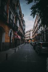 DSC_3354 (Chyolkina) Tags: madrid city travel capitals cityview neverstopexploring