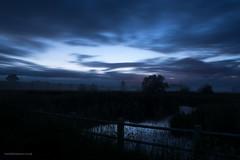 BlueSomertonL-3654 (toniertl) Tags: longexposure trees mist reflection silhouette night river dark evening meadow valley fields bluehour somerton cherwellvalley nikkor2885 toniphotoxoncouk