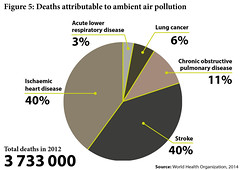 Deaths attributable to ambient air pollution (Zoi Environment Network) Tags: world chart ecology death heart graphic air cancer graph stroke number part pollution diagram link data environment share disease chronic global 2012 statistic cause piechart percentage lung respiratory acute pulmonary ischaemic