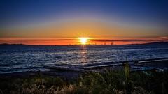 'Seas' the moment (Images by Christie  Happy Clicks for 2016!) Tags: ocean nightphotography blue sea orange beach washington nikon waves glow tide logs fave explore seashore pointroberts goldenhour sunstar wildgrass whatcomcounty lowlightphotography d5200