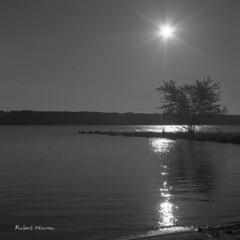 Un matin au bord de la rivire Outaouais... (Argentique) / Early morning on the Ottawa river... (Film) (Pentax_clic) Tags: bw 120 tlr robert film river soleil juin model quebec tmax riviere 11 nb d76 f 400 warren hudson argentique tmy 2016 ciroflex