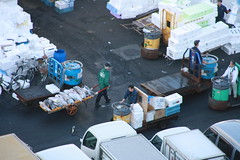 IMG_5899 (tsaaby) Tags: japan fishmarket fisk fiskemarked tmfstudietur