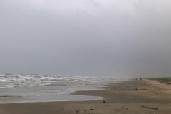padre_island_nat_seashore_6D4173 (cold_penguin1952) Tags: beach padreisland padreislandnationalseashore