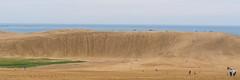 03 (tomomega) Tags:     sand dune