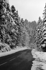 3209.Winter (Greg.Photographie) Tags: road winter blackandwhite bw film rollei analog noiretblanc 200 epson neige 28 45mm schneiderkreuznach v500 oyonnax superpan adox r09 polomat