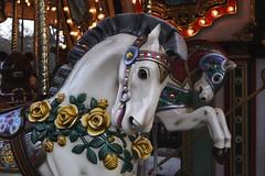 White horse of Carrousel  (FujiFilm X10) (potopoto53age) Tags: horse white apple japan aperture  fujifilm merrygoround fujinon whitehorse yamanashi carrousel x10 kiyosato  appleaperture     superebc moeginomura potopoto53age mygearandme kiyosatomoeginomura fujifilmx10 fujinonsuperebc21mm112mmf20f28 21mm112mm f20f28 whitehorseofcarrousel