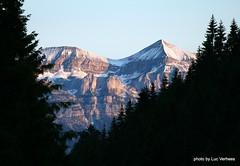 Monte Pavione seen from San Martino di Castrozza (Lucsaflex) Tags: mountain forest pyramid dolomieten montepavione martinodicastrozza