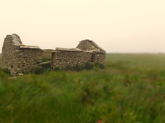 Old stone house (Owen H R) Tags: old house stone orkney ruin birsay owenhr