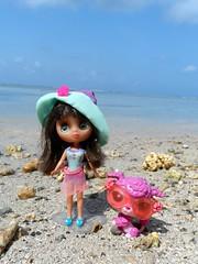 Looking for seashells