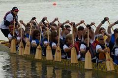 Race 10 Concentration (labels_30) Tags: ca edmonton ab rowing paddling northsaskatchewanriver dragonboatfestival edmontondragonboatfestival