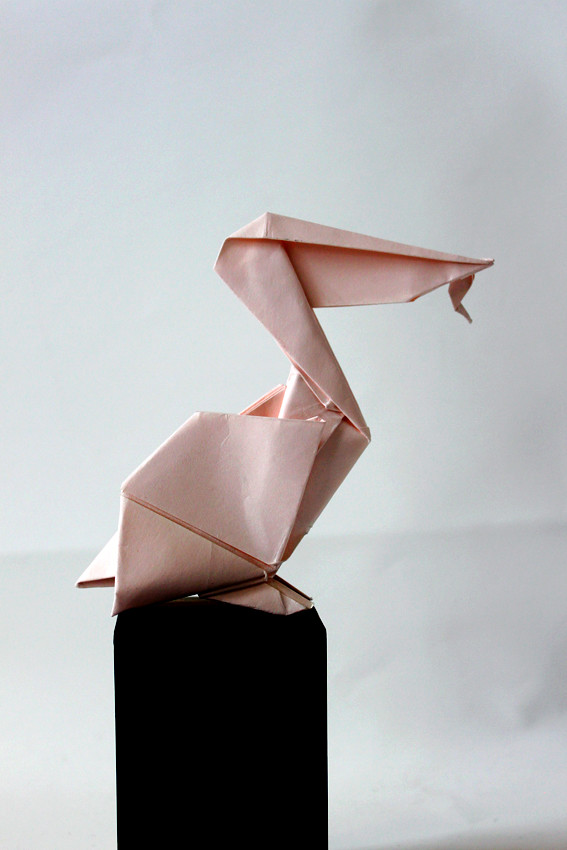 The Worlds Newest Photos By Paper Folding Artist Redpaper Flickr