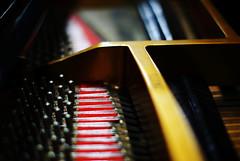 piano wire (HDH.Lucas) Tags: machine lucas cannon gaze