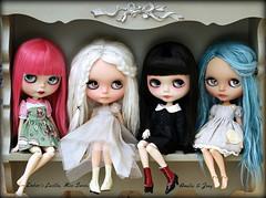 Blythe dolly shelf Sunday (pure_embers) Tags: uk family girls cute dark swan zoey doll dolls sweet sunday group shelf blythe neo amelia custom dolly miss pure lucille takara embers neemo flection pureembers