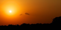 Sunrise, South Africa. (Jos Rambaud) Tags: africa sun sunlight tree sol clouds sunrise landscape southafrica arbol nationalpark sunny amanecer nubes afrika krugernationalpark mpumalanga kruger suidafrika sudfrica mygearandme mygearandmepremium