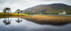 Scotland 2013 (Arnold van Wijk) Tags: greatbritain autumn tree landscape geotagged scotland highlands bomen herfst natuur boom gb landscap schotland gbr stronmilchan grootbrittanni grootbrittani obannorthandlornward geo:lat=5640019178 geo:lon=502381984
