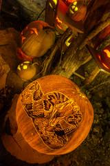 RattleSnake (Frank C. Grace (Trig Photography)) Tags: show park ri november autumn holiday art fall halloween spectacular pumpkin zoo scary october artist unitedstates display jackolantern awesome pumpkins seasonal newengland providence event rhodeisland glowing pumpkinville rogerwilliams pumpkinart laughingtree passionforpumpkins holidayartistry