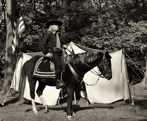 Monroe Civil War Days