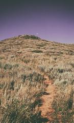 Nebo Moon (α RAINYNEPTUNUS ω) Tags: summer moon mountains fall film analog utah hike f analogphotography nebo mountnebo filmphotography