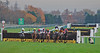 Racing for the line .... (Halliwell_Michael ## Thanks you for your visits #) Tags: autumn trees horses horse fences lancashire jockeys horseracing racecourse autumncolour theworldwelivein 2013 haydockpark nikond40x