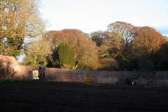 Colclough Walled Garden (Ken Meegan) Tags: ireland tinternabbey cowexford saltmills colcloughwalledgarden 7122013