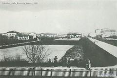 Gualtieri dalla Ferrovia Veneta 1900