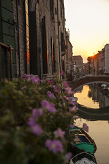 IMG_3714 (SamSeguso) Tags: bridge flowers venice light sunset italy orange sun reflection water boat reflex violet dreams venise balconi sunsetinvenice