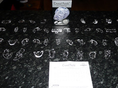 CSkull Pieces (Little Boffin (PeterEdin)) Tags: game lumix skull panasonic plastic puzzle ltd industries jigsawpuzzle plasticskull humanskull panasoniclumix jeruel crystalskull 3djigsawpuzzle dmctz3 tz3 panasonictz3 panasonicdmctz3 plasticskullpuzzle crystalskullpuzzle funtimegiftsltd