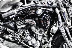 Old School (Funtographer) Tags: old black reflection bike harley chrome harleydavidson motorcycle motor pinstripe gastank vision:car=0903 vision:city=0674