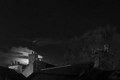 Cork City & moon light (Peter von Kappel) Tags: city ireland light bw cloud moon tree night clouds canon dark stars cork midnight moonlight mark2 canonef24105mmf40lisusmlens