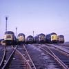 Tinsley Sunday Line Up. (Kingfisher 24) Tags: england yorkshire instamatic104 sheffieldtinsley classes45473137