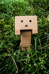 (Ana B. Hertogs) Tags: toy photo mueco fotografia bambo juguete danbo danboard