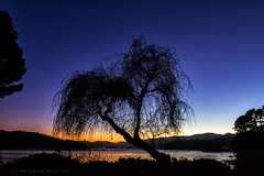 Cae la noche... (Emilio Rodrguez lvarez) Tags: blue winter sea espaa tree fall silhouette azul canon lights iso100 evening luces mar spain corua quiet peace shadows affection dusk branches paz panoramic tokina galicia hour hora figueiras rbol otoo invierno marsh silueta f80 would marisma stillness sombras tarde anochecer  exp panormica ramas tranquilidad cario ra largaexposicin quietud 1116  canon7d 30exp radeortigueira