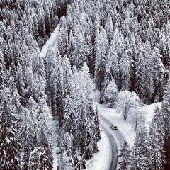 Puijo | Winter Road (Toni Kaarttinen) Tags: road snow car forest suomi finland square finnland squareformat hudson kuopio finlandia birdview puijo フィンランド finlande finlândia savo finnország finlanda finlàndia финляндия finnlando iphoneography فنلندا instagramapp uploaded:by=instagram