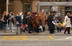 Bus Stop 4 - The Bus is Coming (r_evolution63) Tags: street city people urban italy colors lumix europa europe strada italia gente streetphotography streetlife busstop persone persons colori compact città padova padua veneto fermata rivierapontiromani