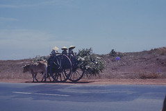 Wagon Transport (dcnelson1898) Tags: war usarmy southvietnam 1stcav ch47chinook 362ndassaulthelicoptercompany