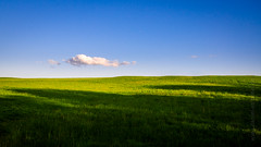 Wallpaper 2.0 (Daniel Stroebel) Tags: windows light wallpaper sky nature grass clouds rural germany landscape bayern deutschland bavaria licht countryside nikon image availablelight background natur meadow wiese himmel wolken naturallight shade microsoft gras landschaft schatten lach hintergrundbild lndlich natrlicheslicht vorhandeneslicht burgthann d7000