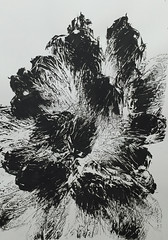 Nagsoul  Myst #824, 2015. Drawing: Ink on paper, 65 x 50 cm. Black and WhiteAbstract ExpressionismMonochrome (ArtAppreciated) Tags: white abstract black art monochrome ink painting french drawing contemporary fineart monochromatic blogs artists abstraction burst minimalism 2015 4p artblogs nonrepresentational tumblr 2010s artoftheday artofdarkness date2015 artappreciated artofdarknessco artofdarknessblog nagsoul